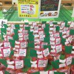 彩里農園さんの有機トマト入荷
