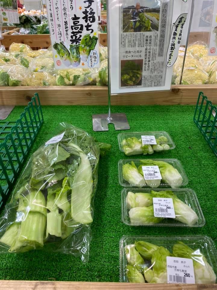 お待たせしました北はりま旬菜館推奨野菜『子持ち高菜出荷』